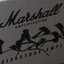 Unboxing Marshall AFD100